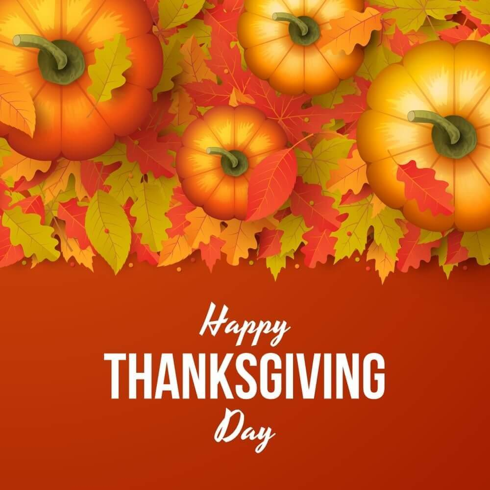 happy thanksgiving pictures and images