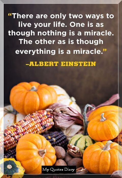 thanksgiving quotes with images