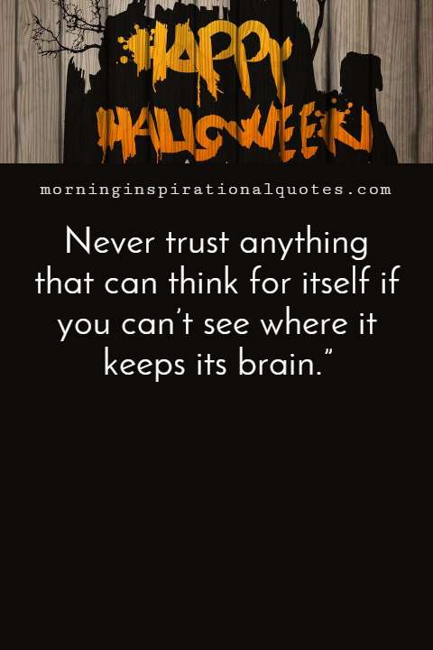 Funny Halloween Quotes Images, Halloween Quotes Funny #Halloween