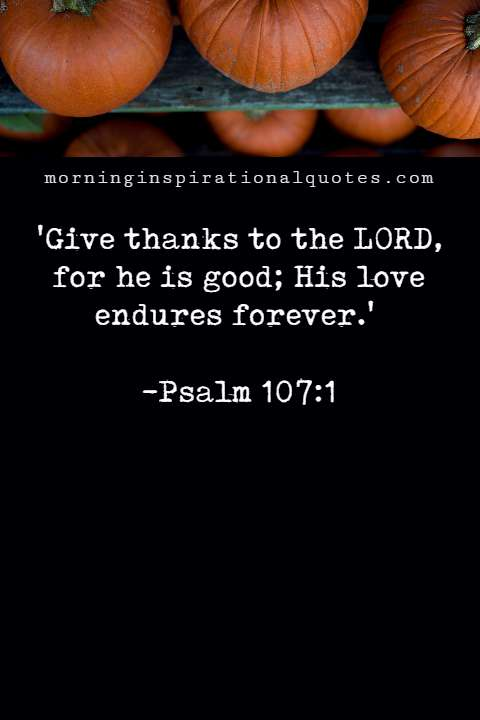 bible verses for thanksgiving and praise #thanksgiving
